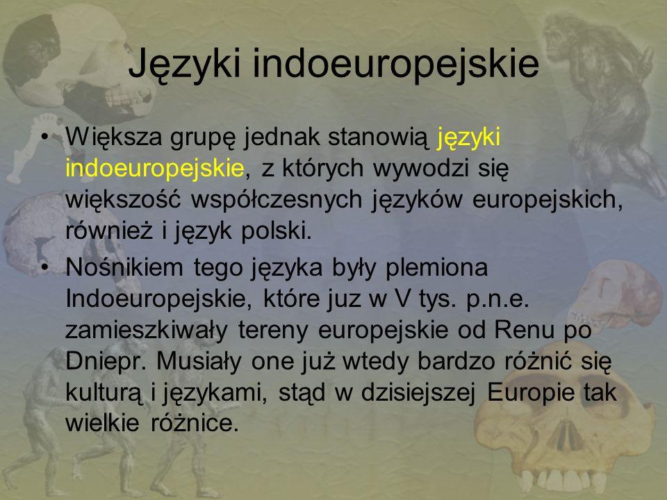 Języki indoeuropejskie Większa grupę jednak stanowią języki indoeuropejskie, z których wywodzi się większość współczesnych języków europejskich, równi