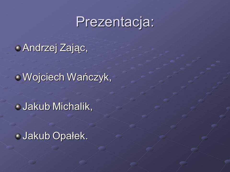 Prezentacja: Andrzej Zając, Wojciech Wańczyk, Jakub Michalik, Jakub Opałek.