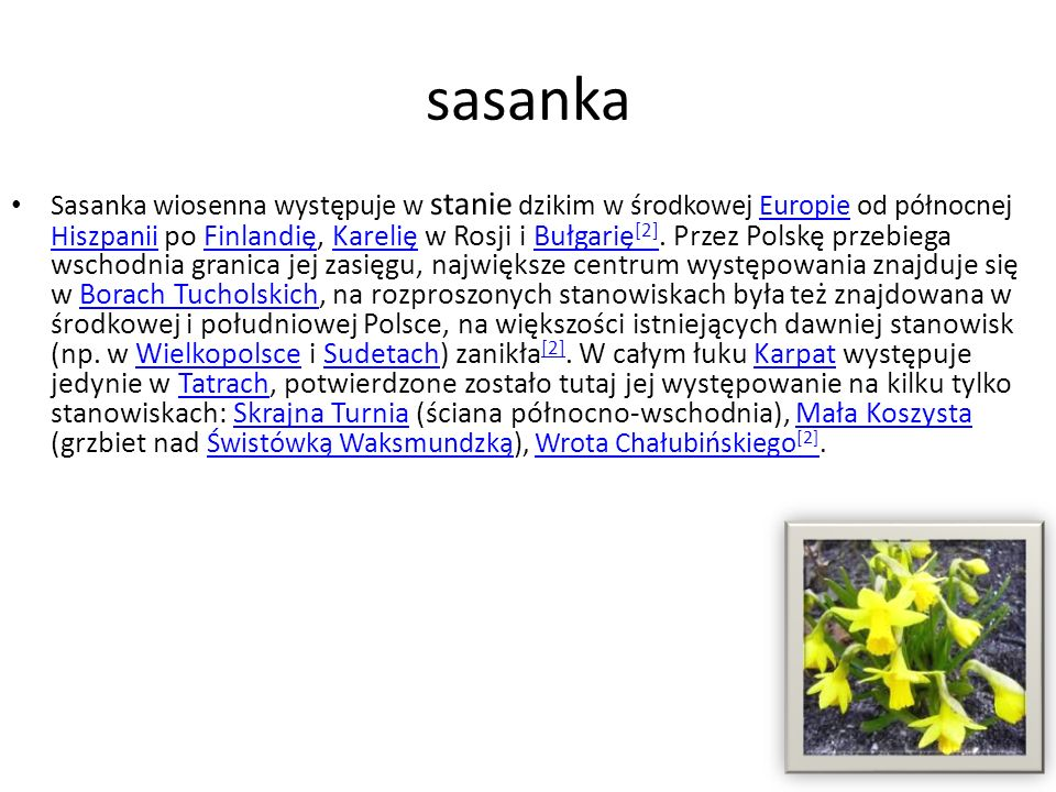 sasanka Sasanka wiosenna występuje w stanie dzikim w środkowej Europie od północnej Hiszpanii po Finlandię, Karelię w Rosji i Bułgarię [2]. Przez Pols
