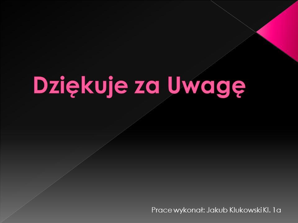 Prace wykonał: Jakub Klukowski Kl. 1a