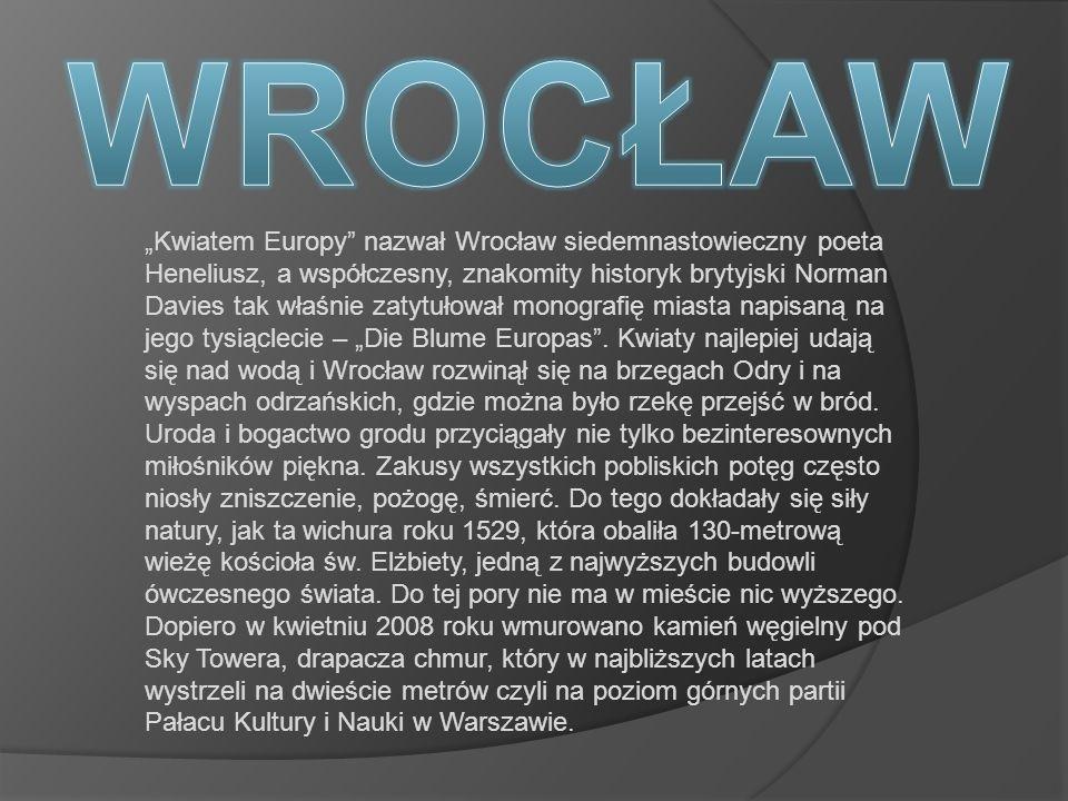Kwiatem Europy nazwał Wrocław siedemnastowieczny poeta Heneliusz, a współczesny, znakomity historyk brytyjski Norman Davies tak właśnie zatytułował mo