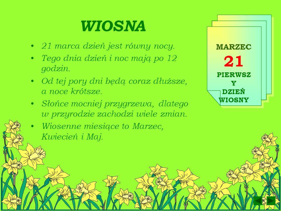 W marcu się zaczyna, gdy się kończy zima. Przyjdzie z wiatru ciepłym wiewem, z pięknem kwiatów, z ptaków śpiewem.