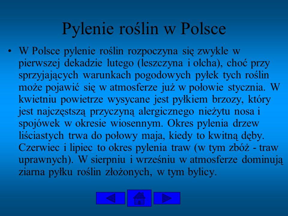 Pylenie roślin w Polsce W Polsce pylenie roślin rozpoczyna się zwykle w pierwszej dekadzie lutego (leszczyna i olcha), choć przy sprzyjających warunka