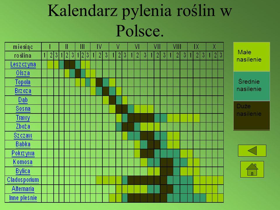 Kalendarz pylenia roślin w Polsce. Małe nasilenie Średnie nasilenie Duże nasilenie