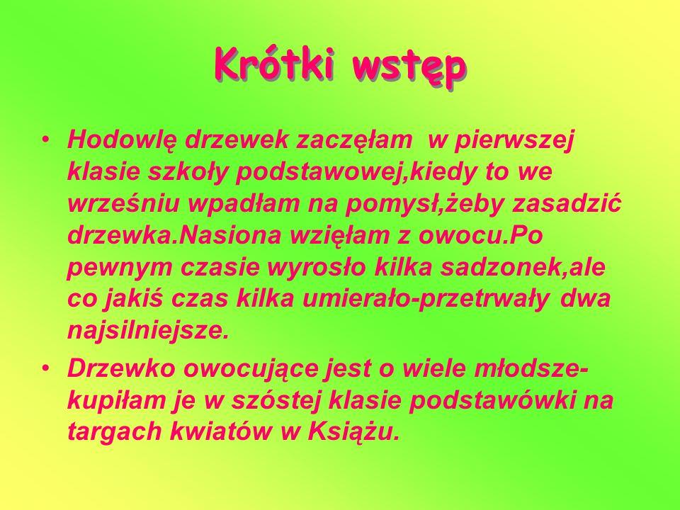 Podstawowe dane KTÓRE DRZEWKA.