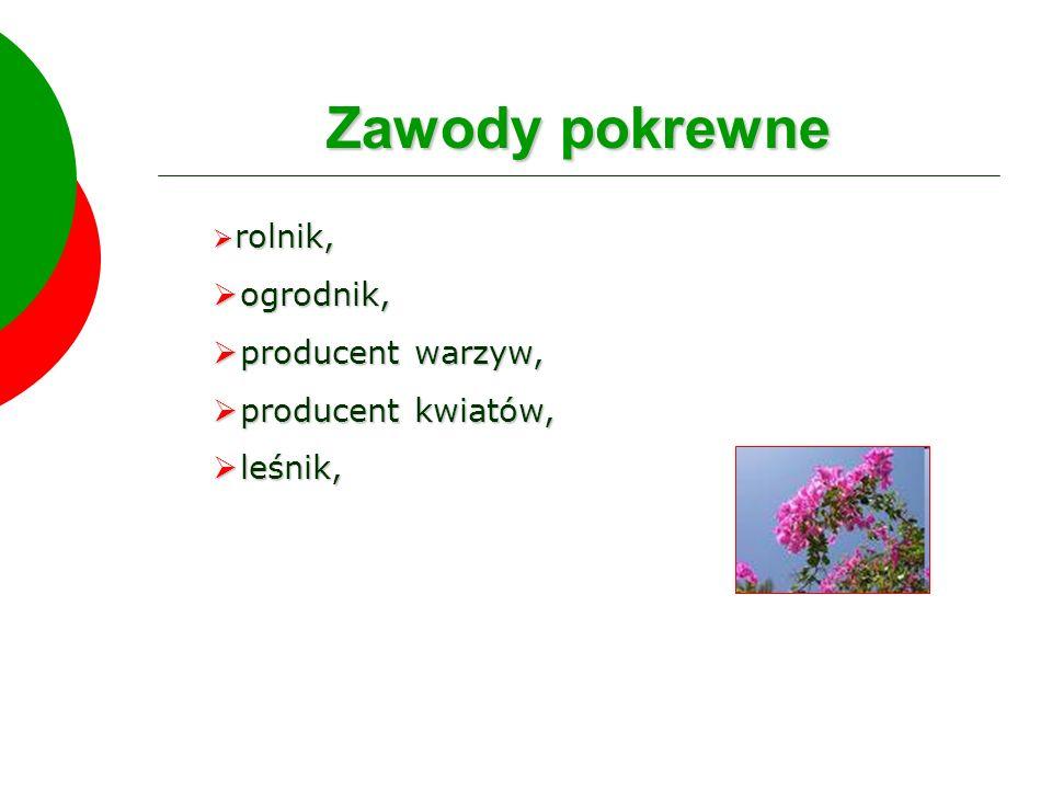 Zawody pokrewne rolnik, rolnik, ogrodnik, ogrodnik, producent warzyw, producent warzyw, producent kwiatów, producent kwiatów, leśnik, leśnik,