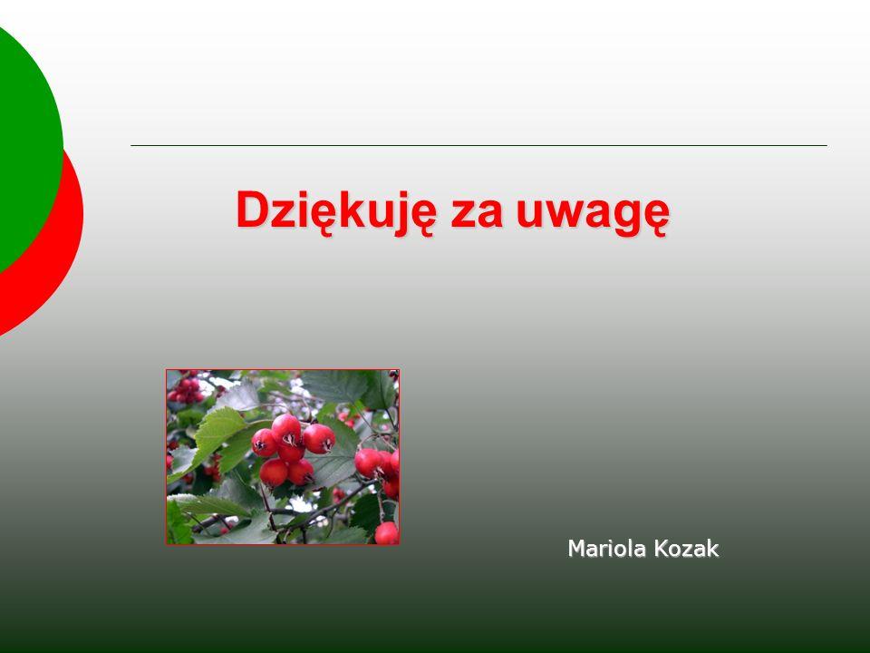 Dziękuję za uwagę Mariola Kozak