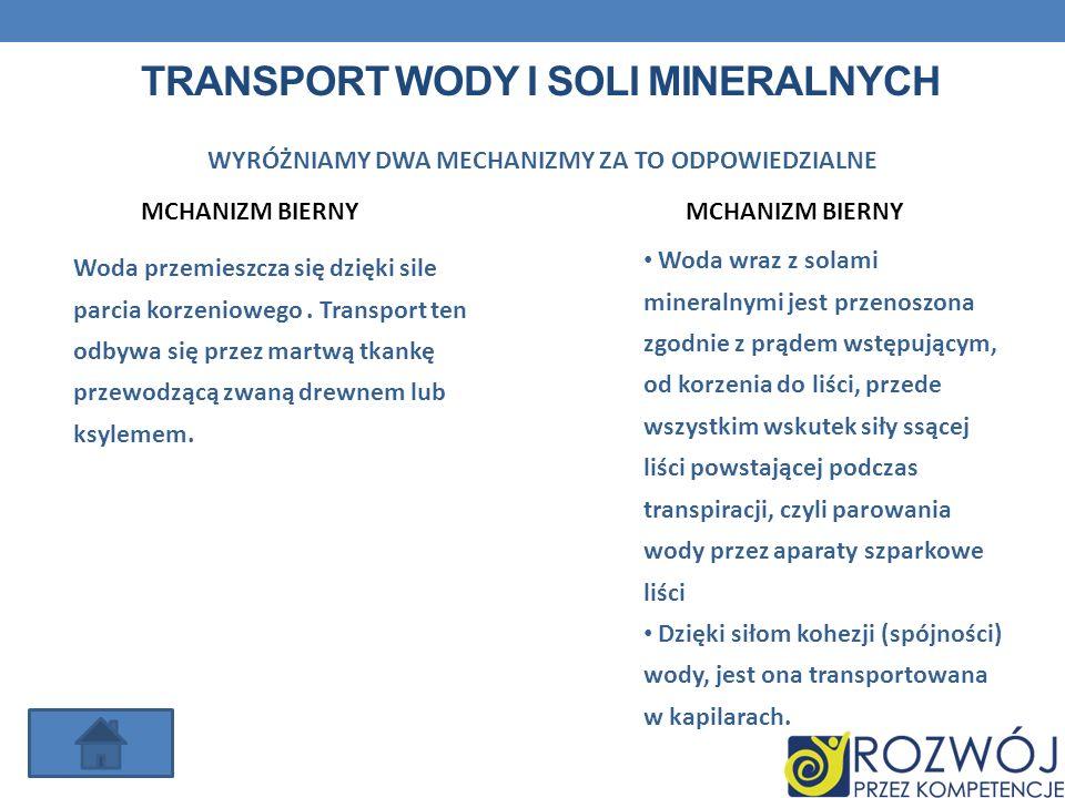 TRANSPORT WODY I SOLI MINERALNYCH MCHANIZM BIERNY WYRÓŻNIAMY DWA MECHANIZMY ZA TO ODPOWIEDZIALNE MCHANIZM BIERNY Woda wraz z solami mineralnymi jest p