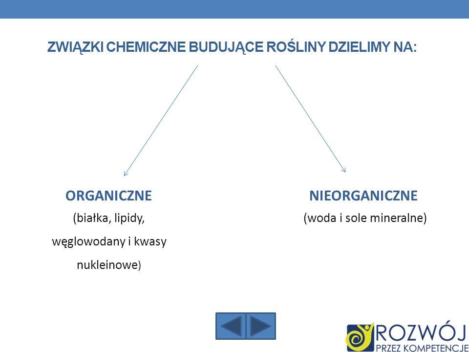 ZWIĄZKI CHEMICZNE BUDUJĄCE ROŚLINY DZIELIMY NA: NIEORGANICZNE (woda i sole mineralne) ORGANICZNE (białka, lipidy, węglowodany i kwasy nukleinowe )