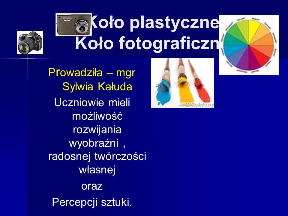 Koło plastyczne Koło fotograficzne P r owadziła – mgr Sylwia Kałuda Uczniowie mieli możliwość rozwijania wyobraźni, radosnej twórczości własnej oraz Percepcji sztuki.