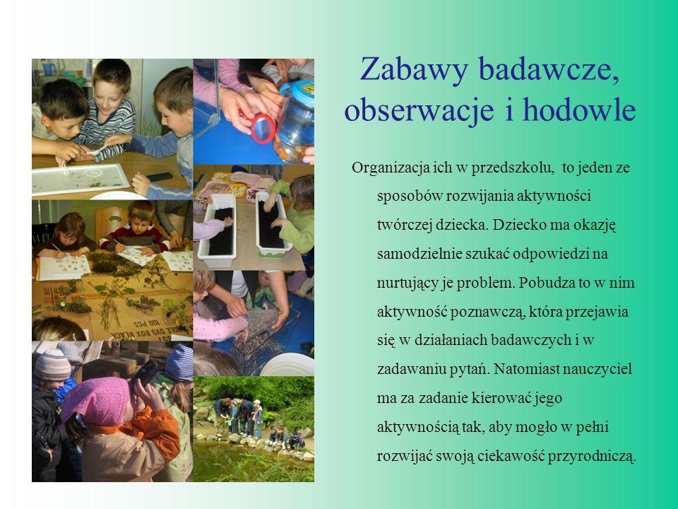 Zabawy badawcze, obserwacje i hodowle Organizacja ich w przedszkolu, to jeden ze sposobów rozwijania aktywności twórczej dziecka. Dziecko ma okazję sa