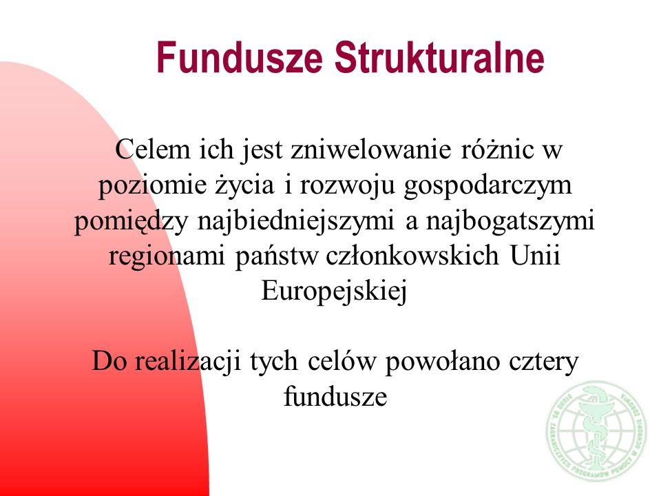 Fundusze Strukturalne -Europejski Fundusz Rozwoju Regionalnego (ERDF) -Europejski Fundusz Społeczny (ESF) -Europejski Fundusz Orientacji i Gwarancji Rolnej (EAGGF) -Instrument Finansowy Rybołówstwa (FIFG) Środki FS rozdysponowane są pomiędzy 4 fundusze zarządzane przez właściwe Dyrekcje Generalne Komisji Europejskiej.
