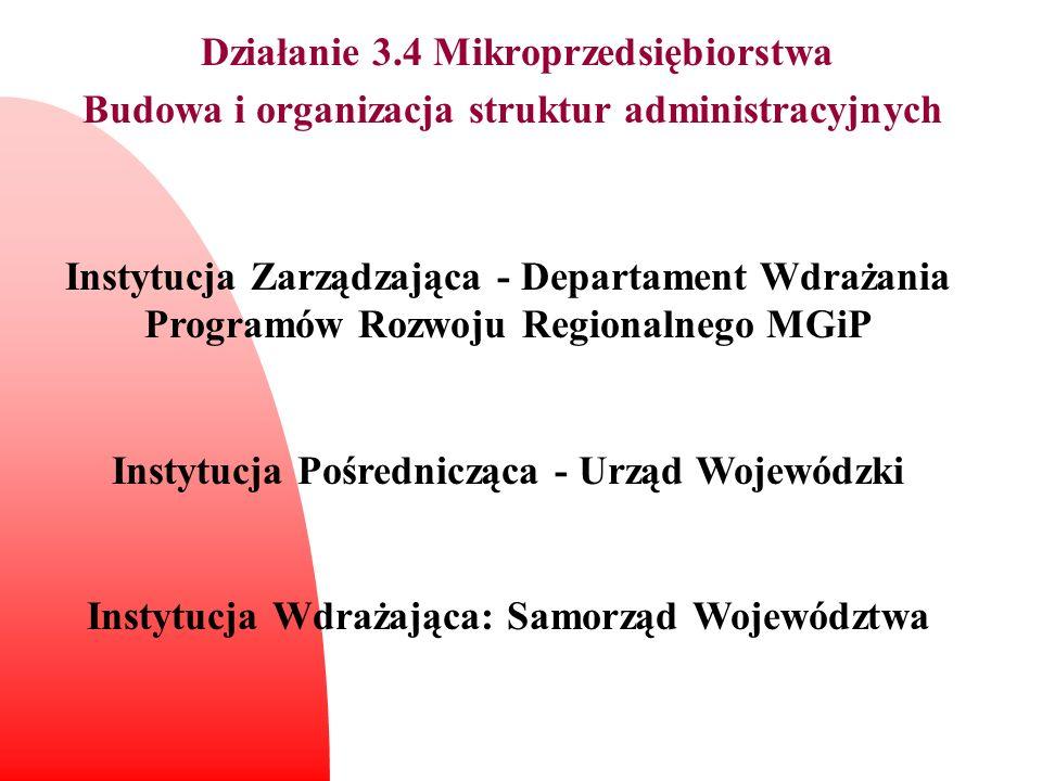 Działanie 3.4 Mikroprzedsiębiorstwa Budowa i organizacja struktur administracyjnych Instytucja Zarządzająca - Departament Wdrażania Programów Rozwoju