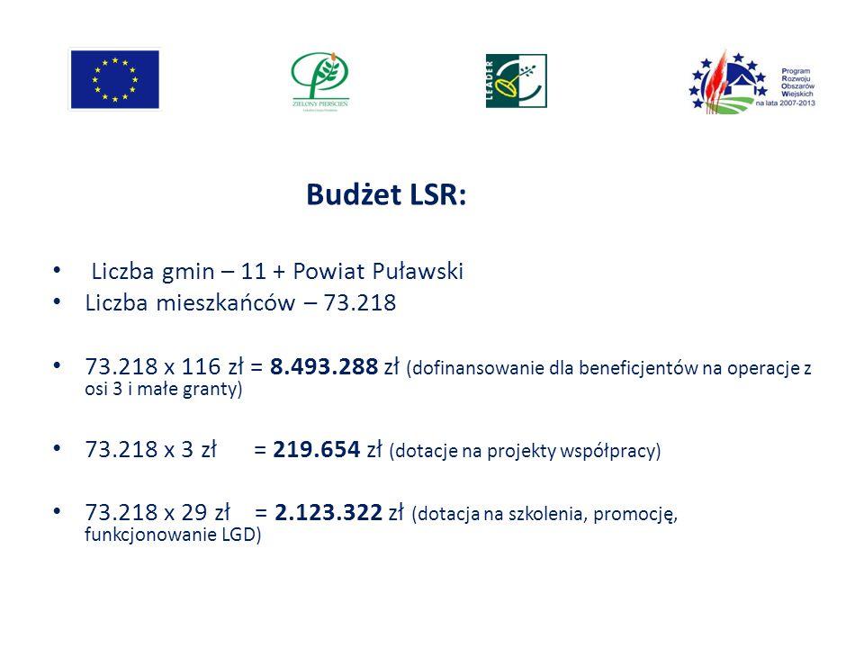 Liczba gmin – 11 + Powiat Puławski Liczba mieszkańców – 73.218 73.218 x 116 zł = 8.493.288 zł (dofinansowanie dla beneficjentów na operacje z osi 3 i