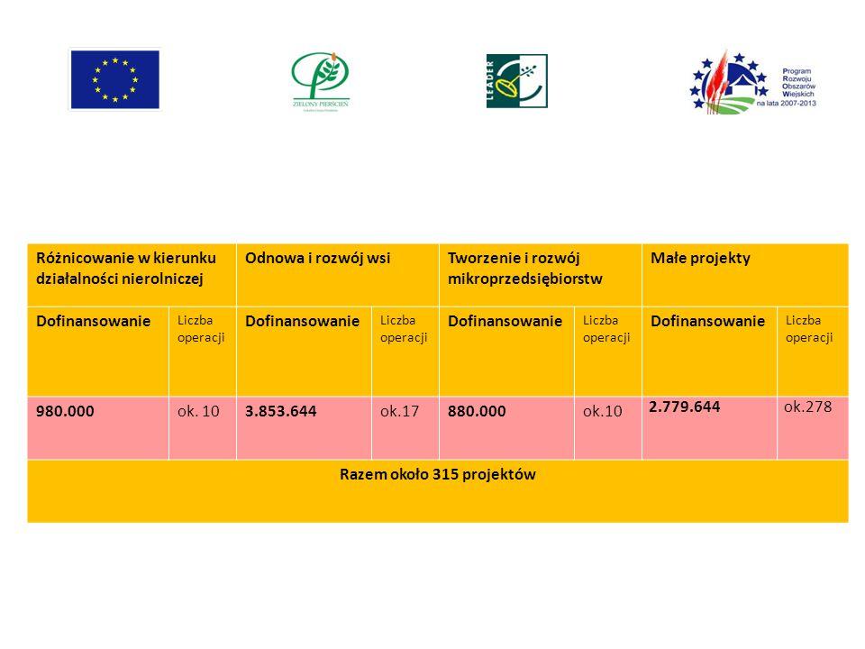 Różnicowanie w kierunku działalności nierolniczej Odnowa i rozwój wsiTworzenie i rozwój mikroprzedsiębiorstw Małe projekty Dofinansowanie Liczba opera