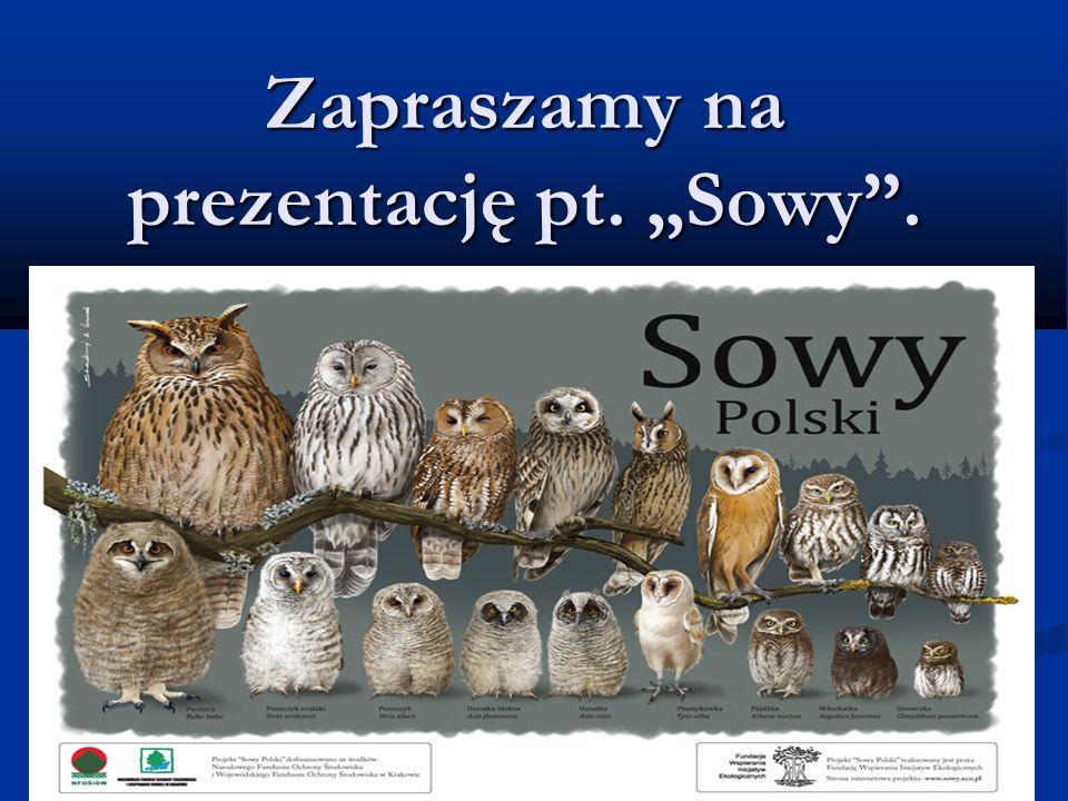 Zapraszamy na prezentację pt. Sowy.