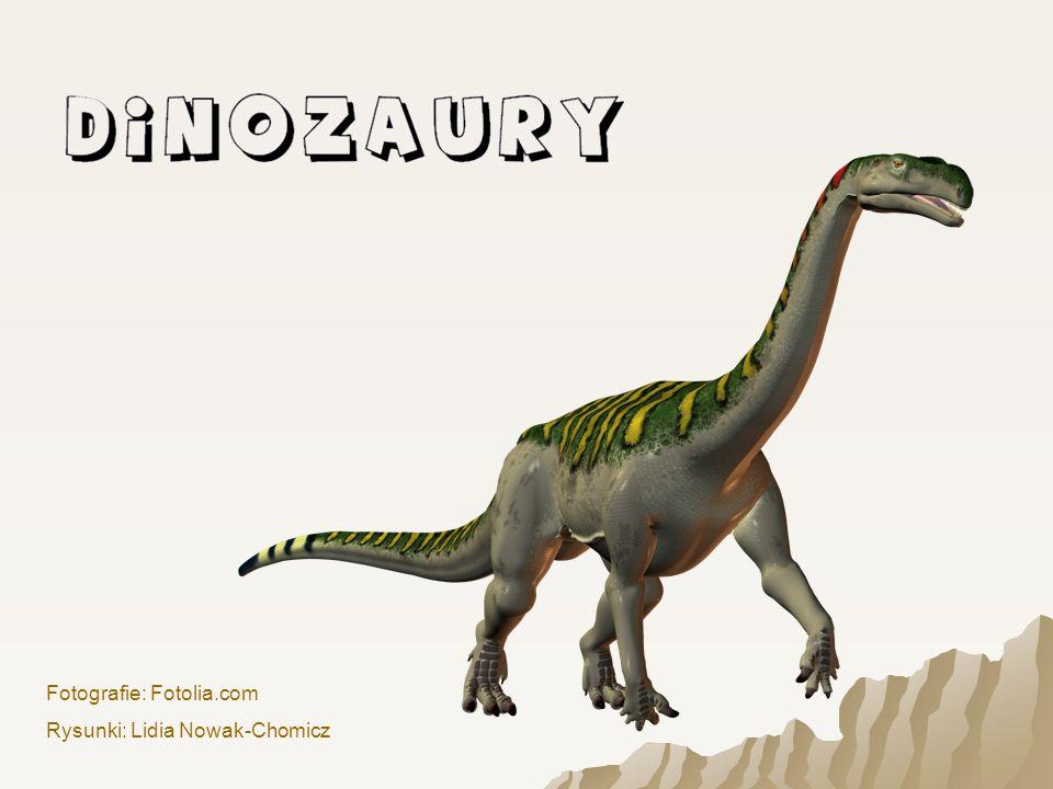 Był jednym z największych dinozaurów.