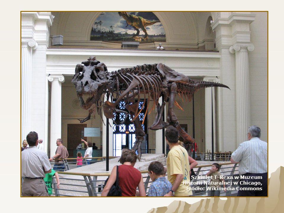 Dinozaury były gadami lądowymi.