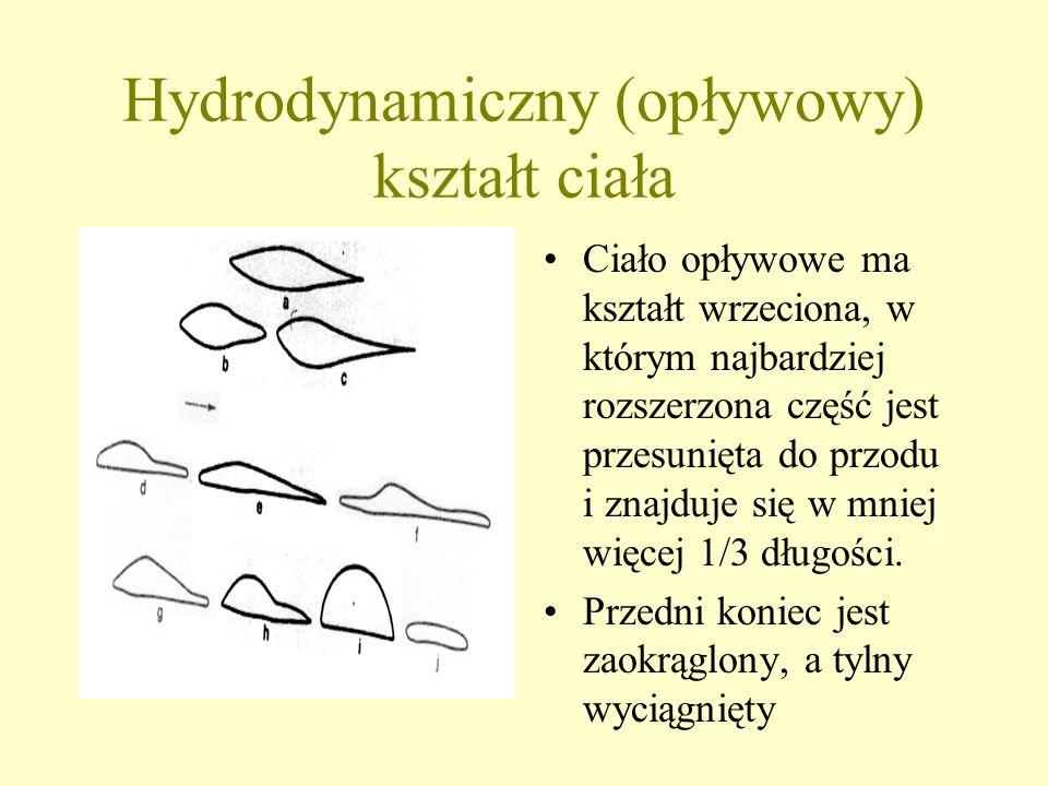 Przystosowania organizmów do ruchu w wodzie U skorupiaków różne typy odnóży są przystosowane do ruchu wiosełkowatego - spłaszczone lub zaopatrzone w r