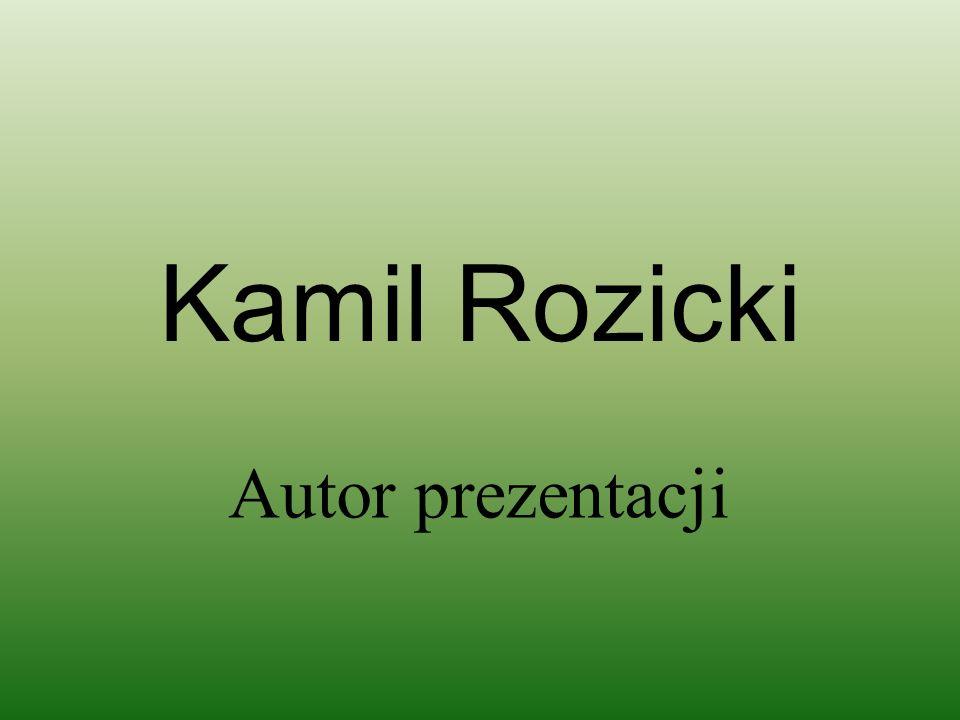 Kamil Rozicki Autor prezentacji