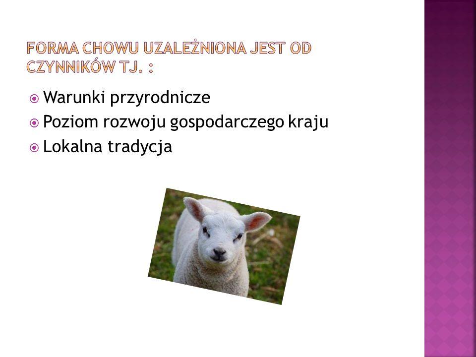 Pasterstwo koczownicze - pasterze wraz ze zwierzętami przemieszczają się w poszukiwaniu pastwisk; system ten występuje dziś dość rzadko, np.