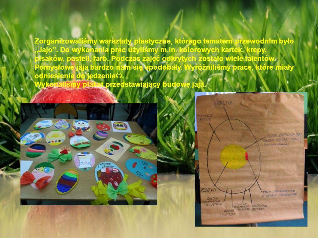 Zorganizowaliśmy warsztaty plastyczne, którego tematem przewodnim było Jajo. Do wykonania prac użyliśmy m.in. kolorowych kartek, krepy, pisaków, paste