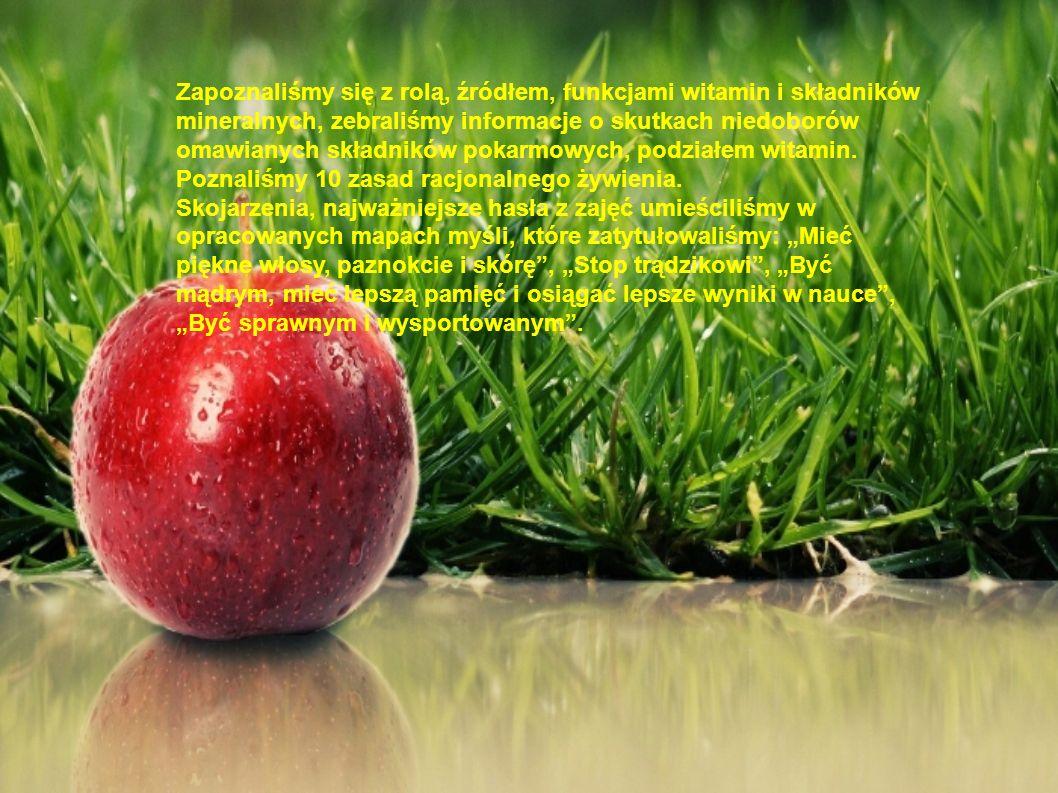 Zapoznaliśmy się z rolą, źródłem, funkcjami witamin i składników mineralnych, zebraliśmy informacje o skutkach niedoborów omawianych składników pokarm