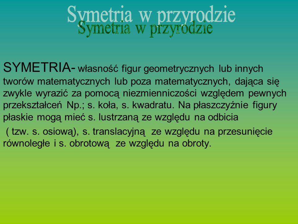 SYMETRIA- własność figur geometrycznych lub innych tworów matematycznych lub poza matematycznych, dająca się zwykle wyrazić za pomocą niezmienniczości względem pewnych przekształceń Np.; s.