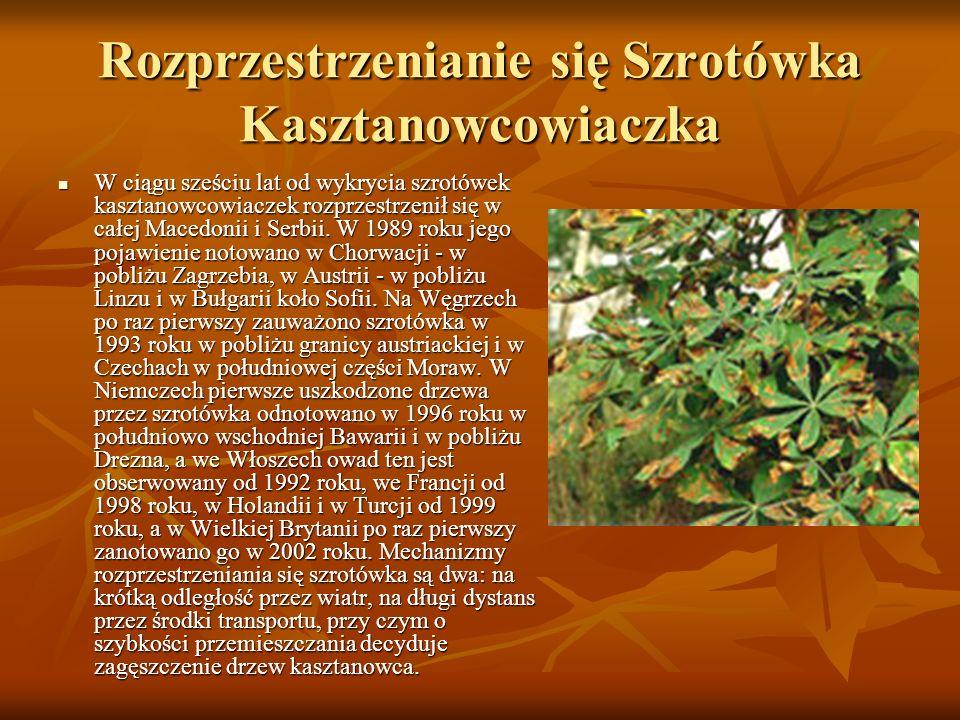 Rozprzestrzenianie się Szrotówka Kasztanowcowiaczka W ciągu sześciu lat od wykrycia szrotówek kasztanowcowiaczek rozprzestrzenił się w całej Macedonii