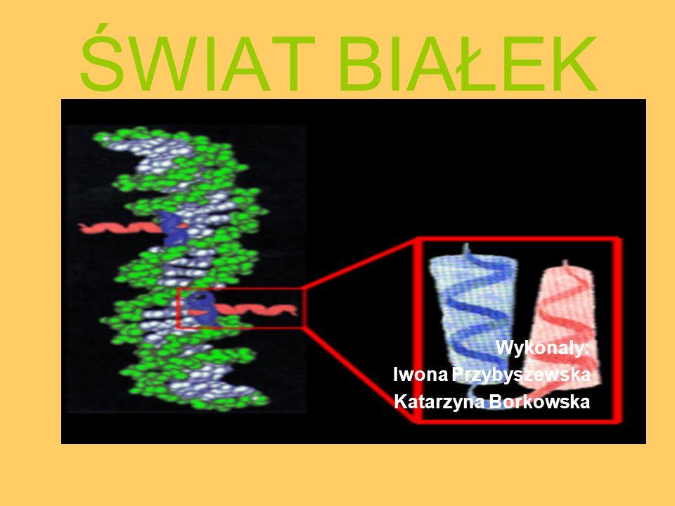 Pierwsze skojarzenia… Białka są to zasadnicze elementy budowy wszystkich tkanek ustroju człowieka oraz wielu związków takich jak: enzymy, hormony, przeciwciała.