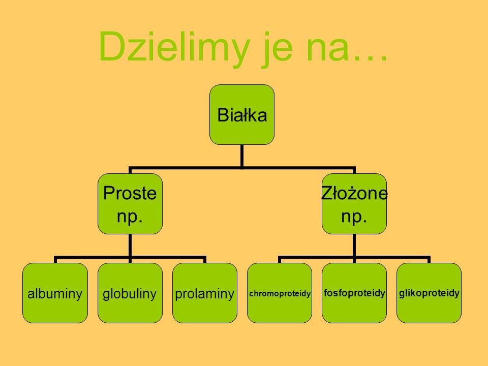 Dzielimy je na… Białka Proste np. albuminyglobulinyprolaminy Złożone np. chromoproteidyfosfoproteidyglikoproteidy