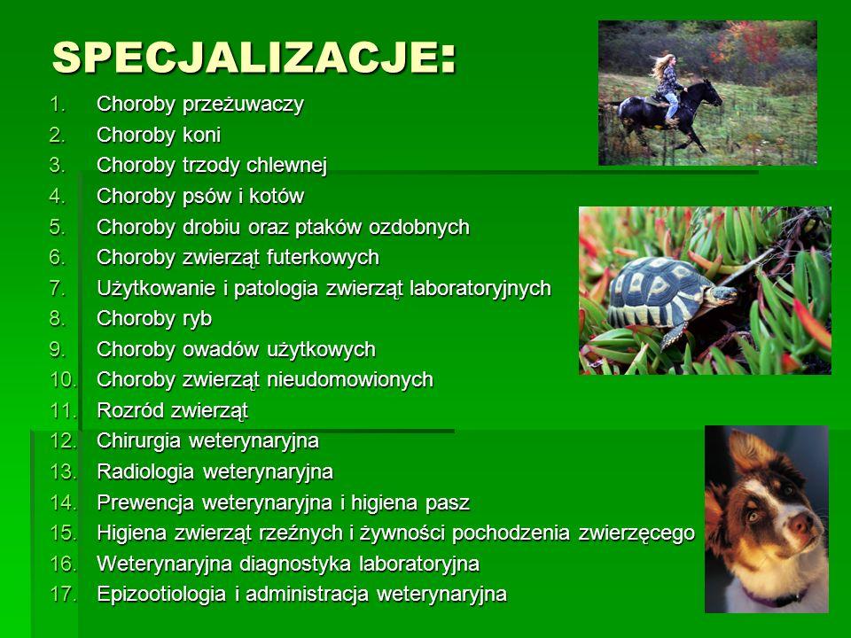 SPECJALIZACJE : 1.Choroby przeżuwaczy 2.Choroby koni 3.Choroby trzody chlewnej 4.Choroby psów i kotów 5.Choroby drobiu oraz ptaków ozdobnych 6.Choroby zwierząt futerkowych 7.Użytkowanie i patologia zwierząt laboratoryjnych 8.Choroby ryb 9.Choroby owadów użytkowych 10.Choroby zwierząt nieudomowionych 11.Rozród zwierząt 12.Chirurgia weterynaryjna 13.Radiologia weterynaryjna 14.Prewencja weterynaryjna i higiena pasz 15.Higiena zwierząt rzeźnych i żywności pochodzenia zwierzęcego 16.Weterynaryjna diagnostyka laboratoryjna 17.Epizootiologia i administracja weterynaryjna