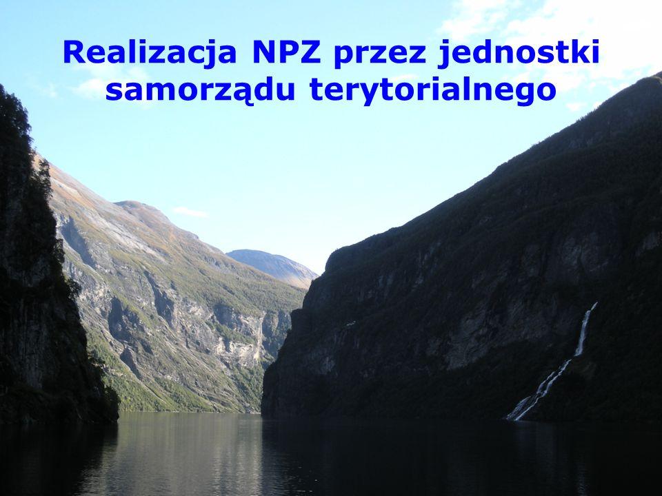Realizacja NPZ przez jednostki samorządu terytorialnego