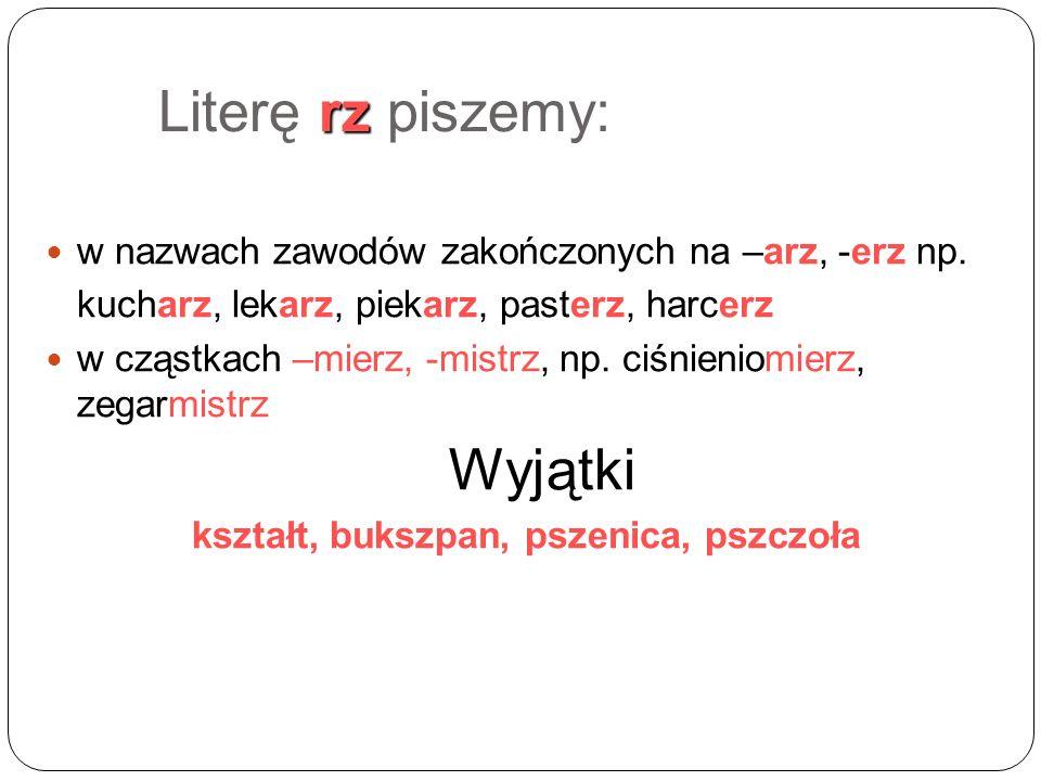 rz Literę rz piszemy: w nazwach zawodów zakończonych na –arz, -erz np.