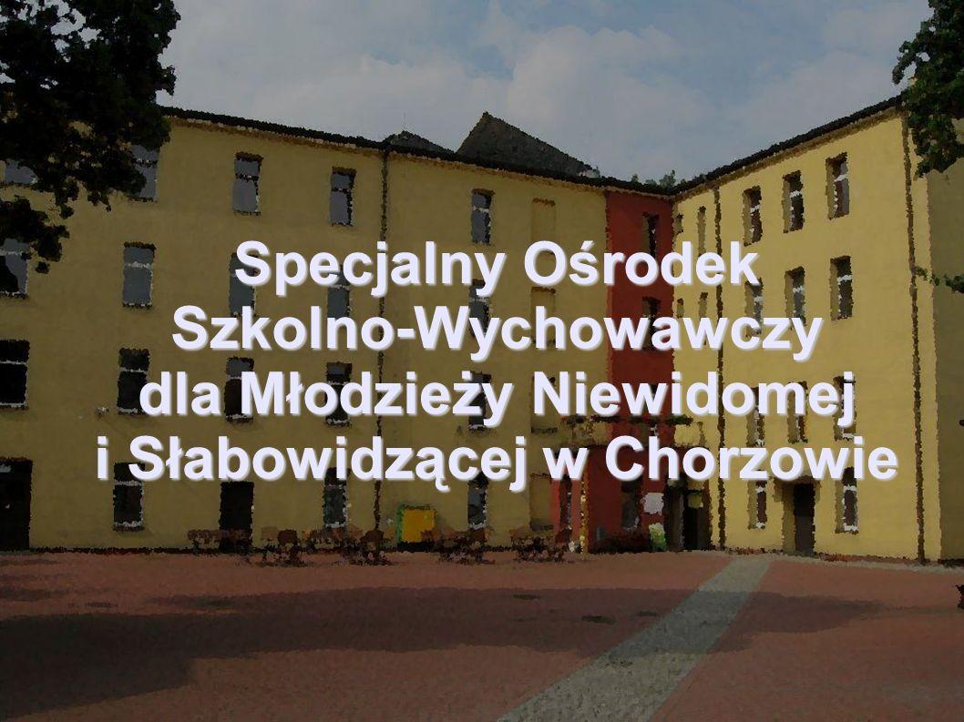 Specjalny Ośrodek Szkolno-Wychowawczy dla Młodzieży Niewidomej i Słabowidzącej w Chorzowie Zapraszamy