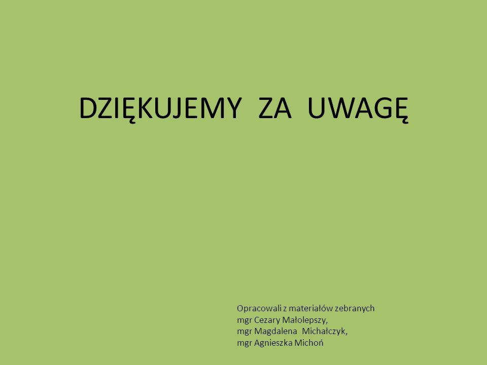 DZIĘKUJEMY ZA UWAGĘ Opracowali z materiałów zebranych mgr Cezary Małolepszy, mgr Magdalena Michałczyk, mgr Agnieszka Michoń