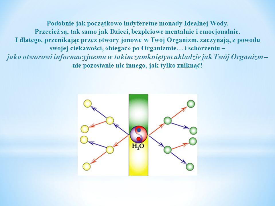 Ale pompa Kwantowo-Jonowa daje nie tylko taki efekt - czyli wdrażanie monad Idealnej Wody do Wewnątrz i «zapieczętowanie» Twojego Organizmu, zapobiegającerozhermetyzowaniu jonowemu.