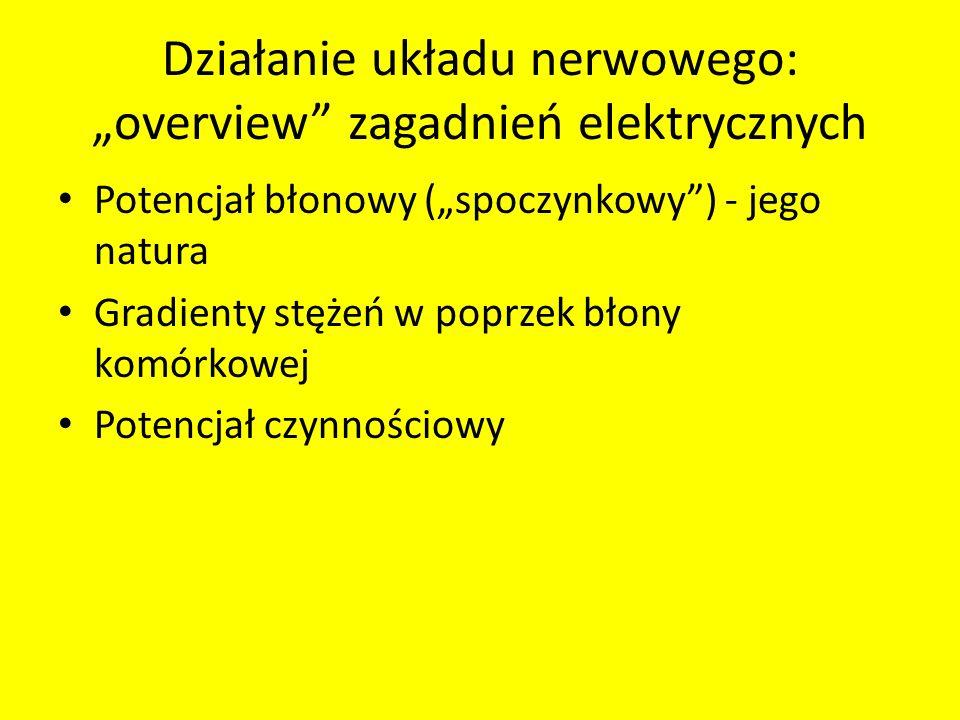 Działanie układu nerwowego: overview zagadnień elektrycznych Potencjał błonowy (spoczynkowy) - jego natura Gradienty stężeń w poprzek błony komórkowej