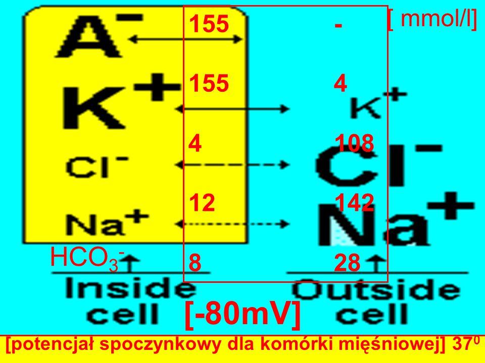 155- 1554 4108 12142 828 HCO 3 - [ mmol/l] [-80mV] [potencjał spoczynkowy dla komórki mięśniowej] 37 0