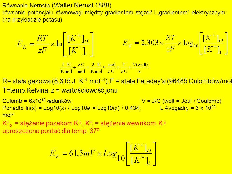 R= stała gazowa (8,315 J K -1 mol -1 );F = stała Faradaya (96485 Culombów/mol) Równanie Nernsta (Walter Nernst 1888) równanie potencjału równowagi mię