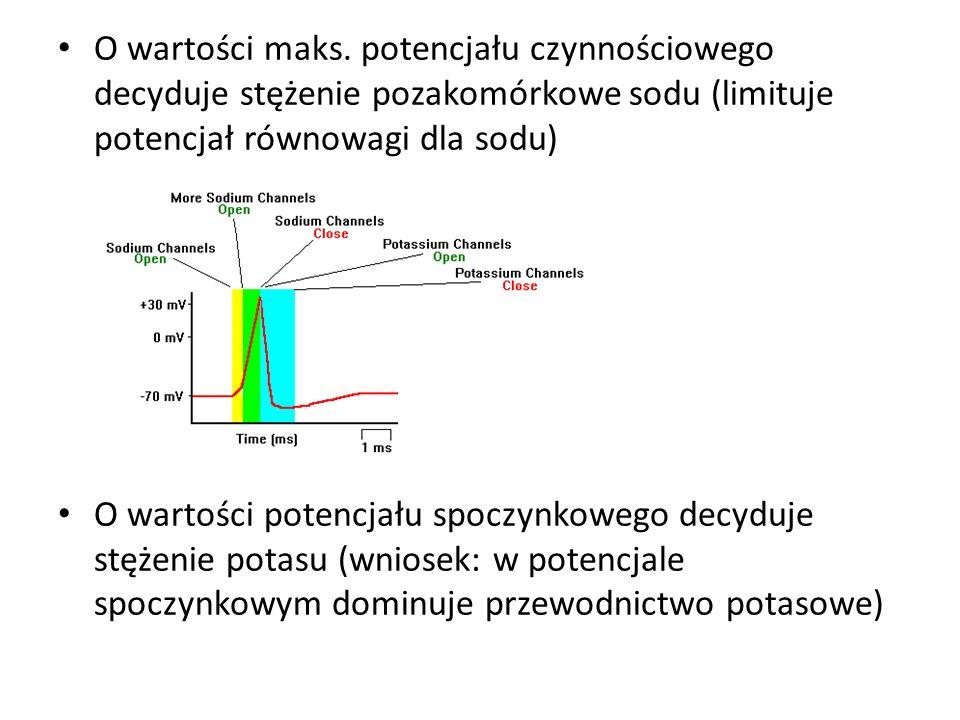 O wartości maks. potencjału czynnościowego decyduje stężenie pozakomórkowe sodu (limituje potencjał równowagi dla sodu) O wartości potencjału spoczynk