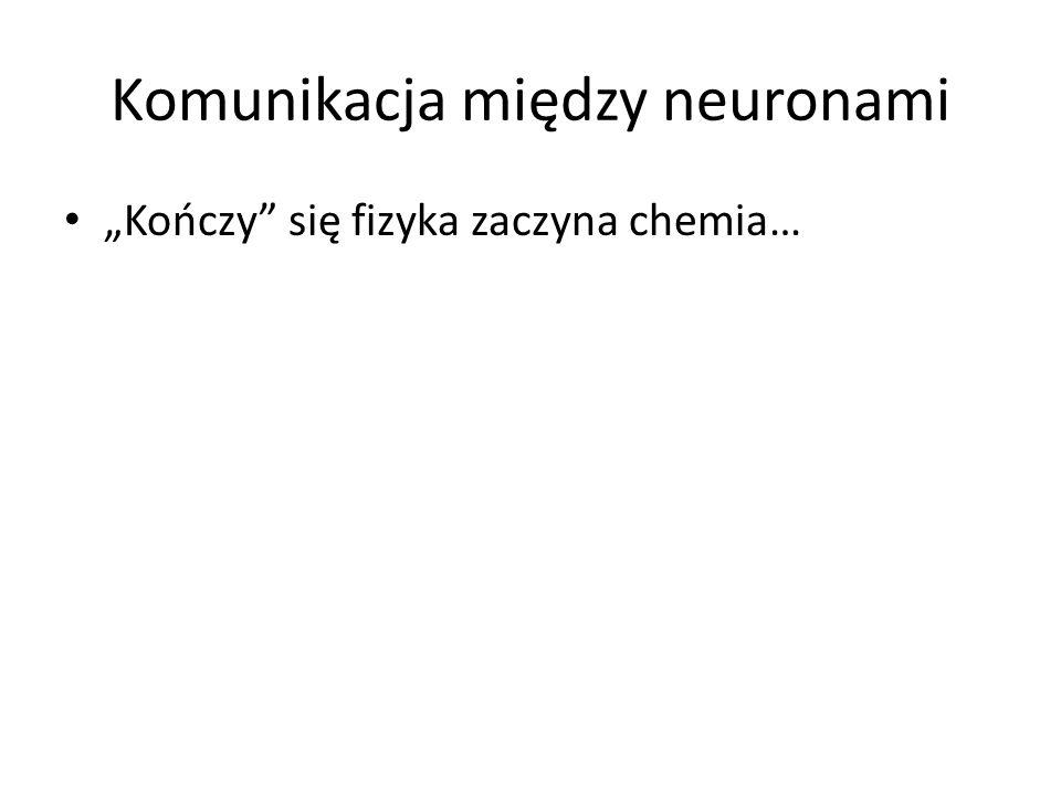 Komunikacja między neuronami Kończy się fizyka zaczyna chemia…