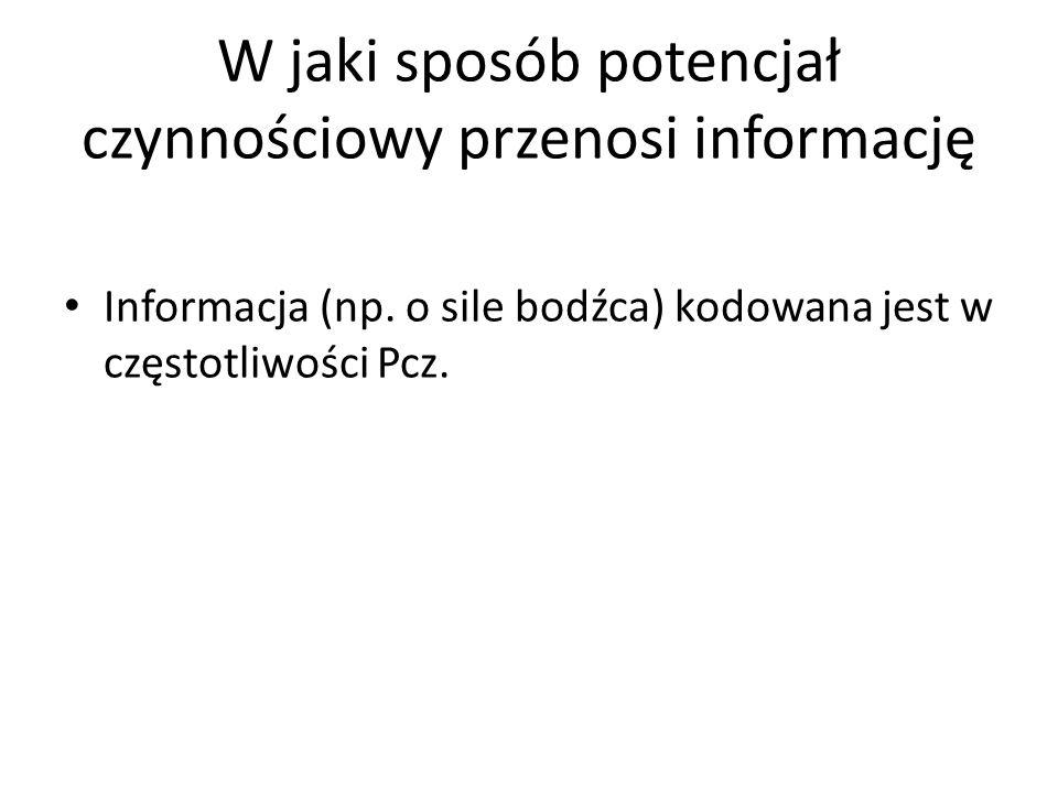 W jaki sposób potencjał czynnościowy przenosi informację Informacja (np. o sile bodźca) kodowana jest w częstotliwości Pcz.