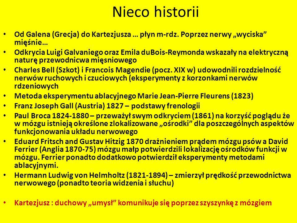 Nieco historii Od Galena (Grecja) do Kartezjusza … płyn m-rdz. Poprzez nerwy wyciska mięśnie… Odkrycia Luigi Galvaniego oraz Emila duBois-Reymonda wsk