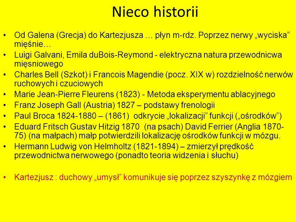 Nieco historii Od Galena (Grecja) do Kartezjusza … płyn m-rdz. Poprzez nerwy wyciska mięśnie… Luigi Galvani, Emila duBois-Reymond - elektryczna natura