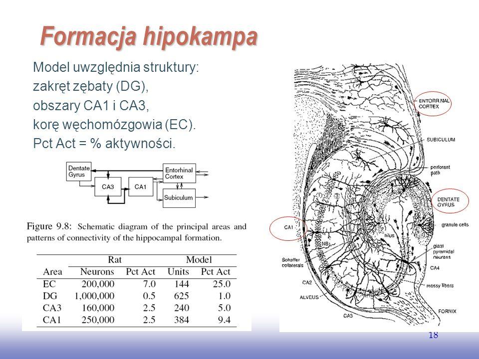 EE141 18 Formacja hipokampa Model uwzględnia struktury: zakręt zębaty (DG), obszary CA1 i CA3, korę węchomózgowia (EC). Pct Act = % aktywności.
