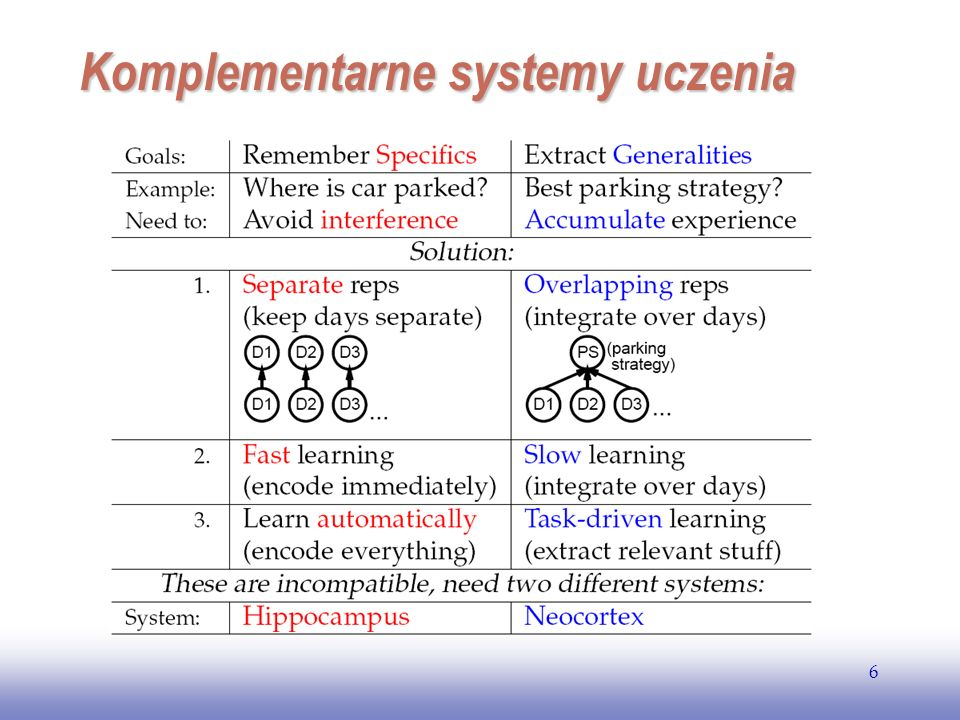 EE141 6 Komplementarne systemy uczenia