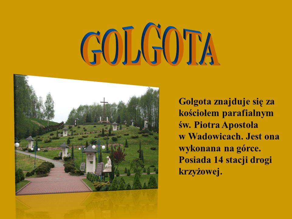 Golgota znajduje się za kościołem parafialnym św. Piotra Apostoła w Wadowicach. Jest ona wykonana na górce. Posiada 14 stacji drogi krzyżowej.