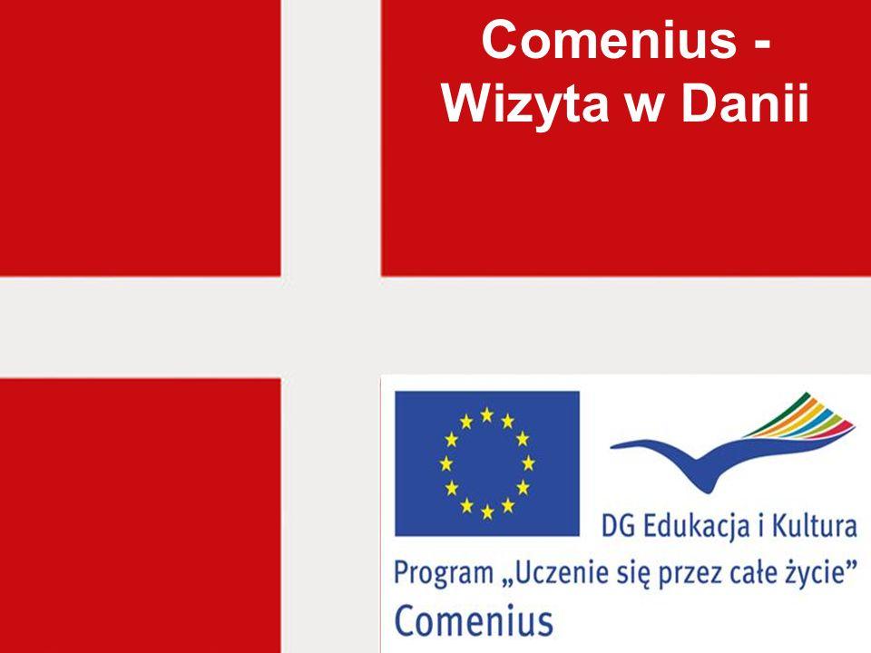 Comenius - Wizyta w Danii