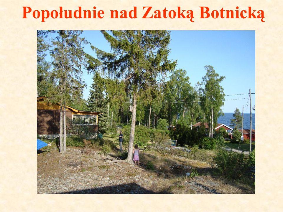 Popołudnie nad Zatoką Botnicką